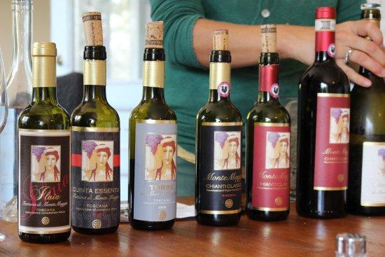 Radda in Chianti, Italië: The wines we tasted!