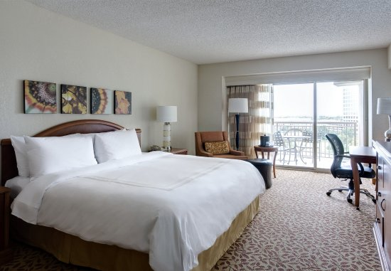 Irving, TX: King Guest Room - Balcony Lake View