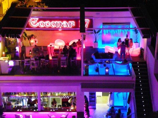 Coconar 17