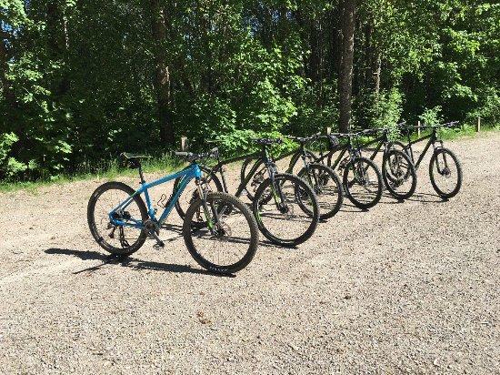 อุปซอลา, สวีเดน: Mountainbikes waiting for a group to arrive.