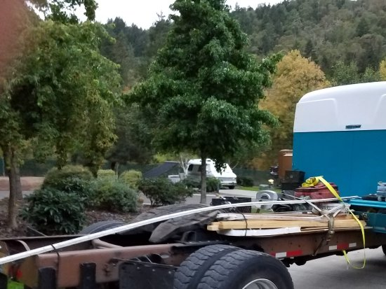 Canyonville, OR: Trailer trash