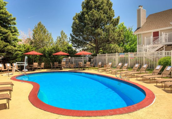 Greenwood Village, CO : Outdoor Pool