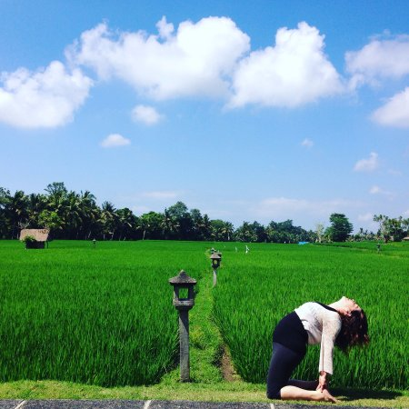 The Chedi Club Tanah Gajah, Ubud, Bali – a GHM hotel: Gorgeous Day Practicing Yoga