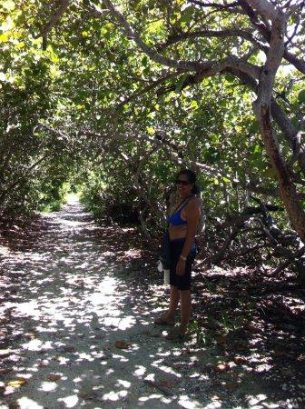 Bahia Honda State Park and Beach: Caminhada
