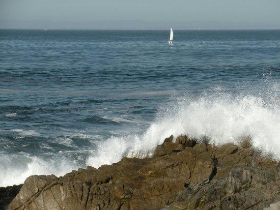 Pacific Grove Oceanview Boulevard: IMG_0316_large.jpg