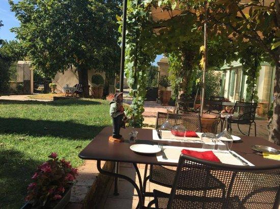 Violes, Francia: Lovely terrace
