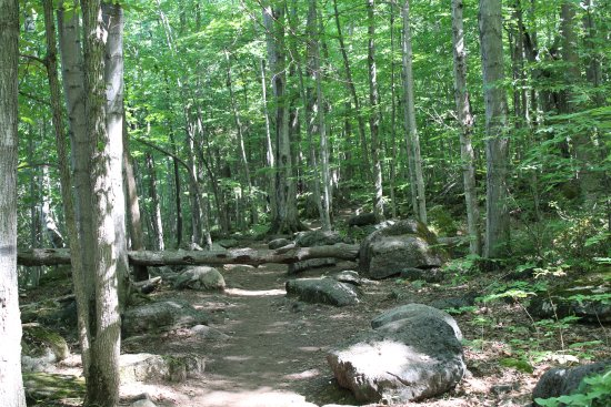 Wiarton, Канада: Good hiking trails