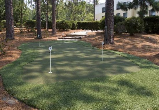 Pinehurst, Caroline du Nord : Putting Green