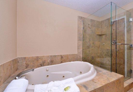 Warren, MI: VIP Suite Bathroom