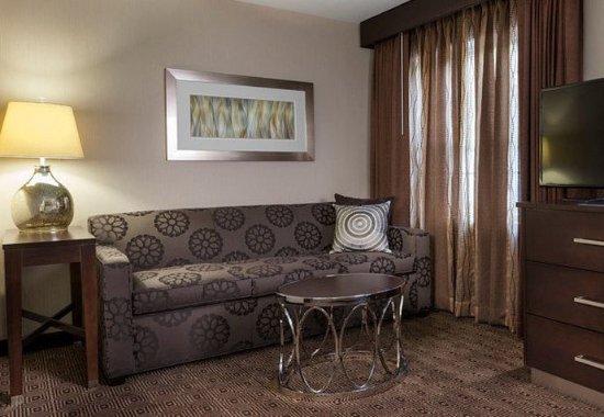 Sudbury, Массачусетс: Studio King Suite - Living Area