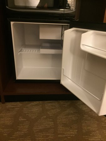 Lakewood, CO: Clean mini fridge