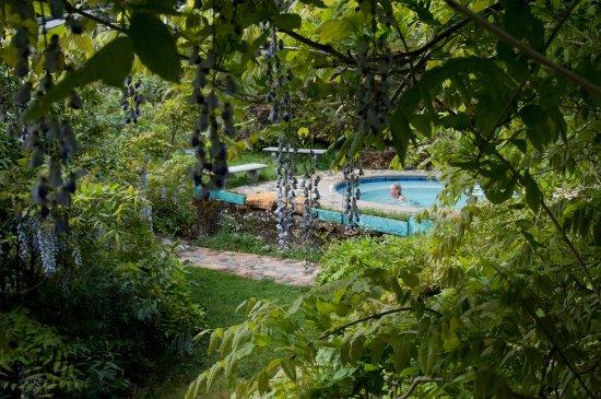 Ukiah, CA: Hot Pool