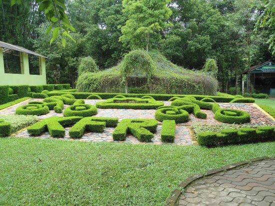Nilambur Teak Museum