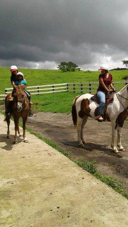 Rincon de La Vieja, Costa Rica: IMG-20160921-WA0049_large.jpg