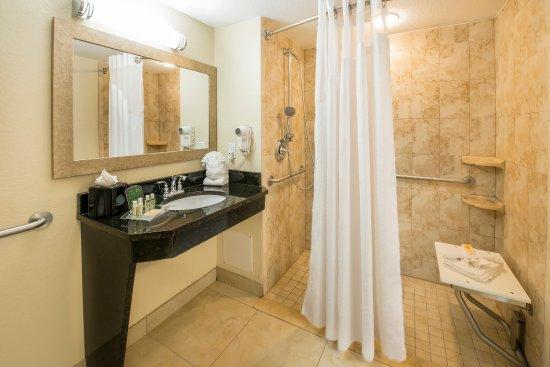 Holiday Inn Resort Orlando-Lake Buena Vista: Accessible Bathroom