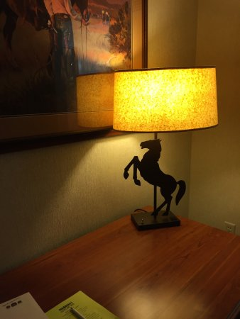 Rock Springs, WY: Loved this lamp!