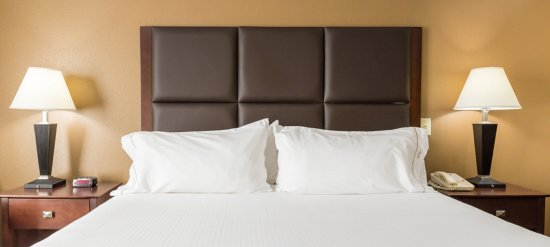 Holiday Inn Express Hinesville-Fort Stewart King Bed