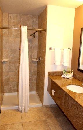 Houghton, ميتشجان: Executive Suite Additional Bath
