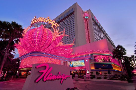 Flamingo casino las vega boomtown casino mississipi