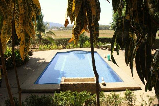 Vista Guapa Surf Camp: Pool area