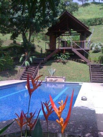Vista Guapa Surf Camp: Pool and Yoga/Massage deck