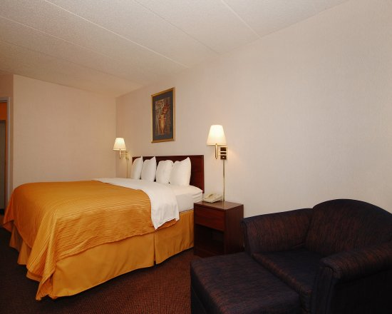 Elk Grove Village, IL: Guest Room