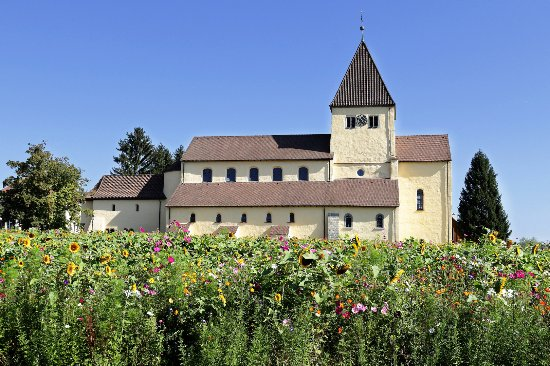 Baden-Württemberg, Deutschland: St George's Church with a mass of wildflowers in front