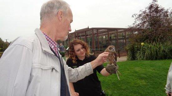 Newport, UK: John stroking the owl