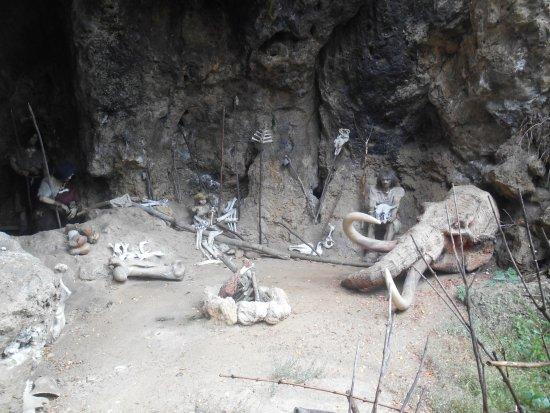 Múzeum praveku Prepoštská jaskyňa: Jaskyňa
