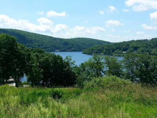New Preston, CT: The lake is so pretty when it's sunny. Wish we could see more of it though.
