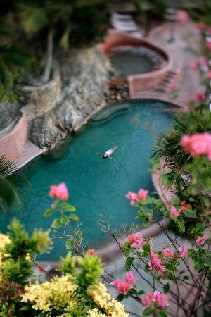 La Casa Que Canta: Bird's eye view of the salt water pool