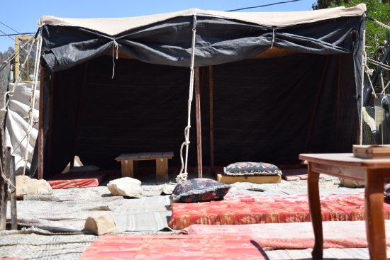 Mati and Roni's Desert GuestHouse : Bedouin Tent