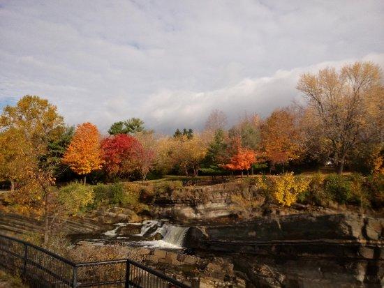 Оттава, Канада: Lovely autumn leaves
