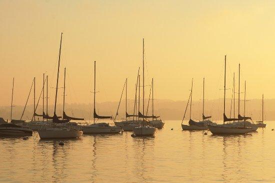 Finger Lakes, NY: Sailboats - Canandaigua Lake, NY