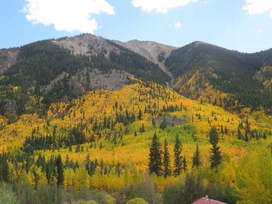 Twin Lakes, CO: Fall aspen views from most of the Lodge