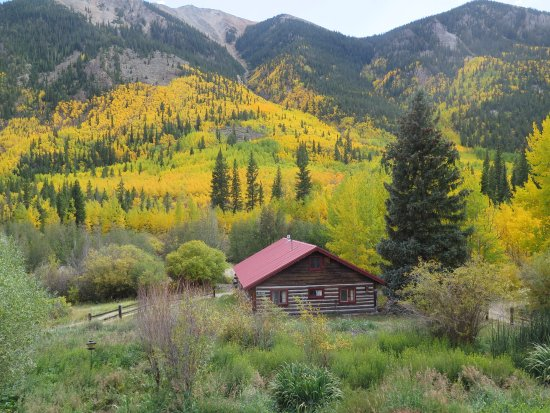 Twin Lakes, CO: Barn Cabin with views of aspen in the fall