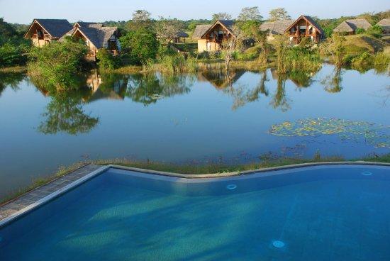 Jetwing Vil Uyana: Pool
