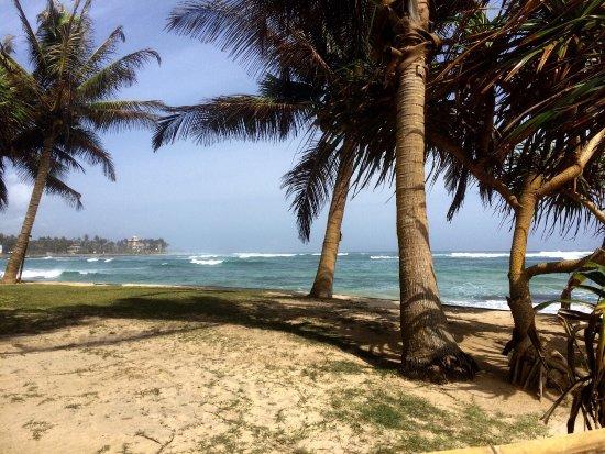 Ahangama, Sri Lanka: photo3.jpg