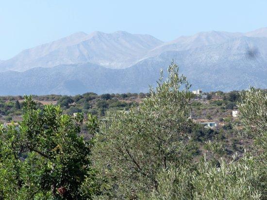 Gavalochori, اليونان: View
