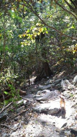 Bluemont, VA: Raven Rocks