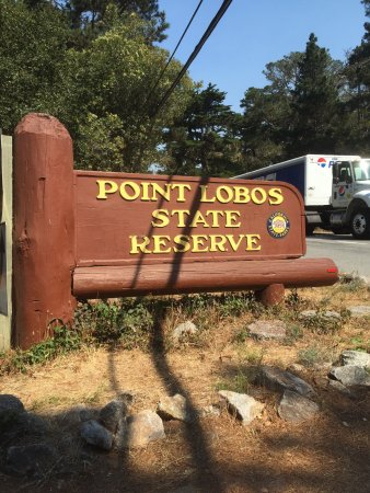 Point Lobos State Reserve: photo0.jpg