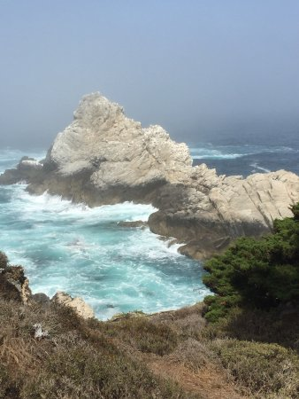 Point Lobos State Reserve: photo3.jpg