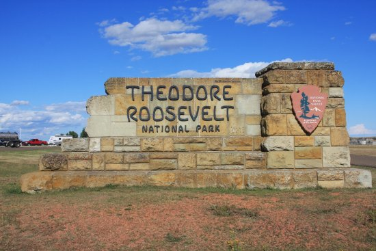 Rough Riders Hotel: Nearby Theodore Roosevelt National Park
