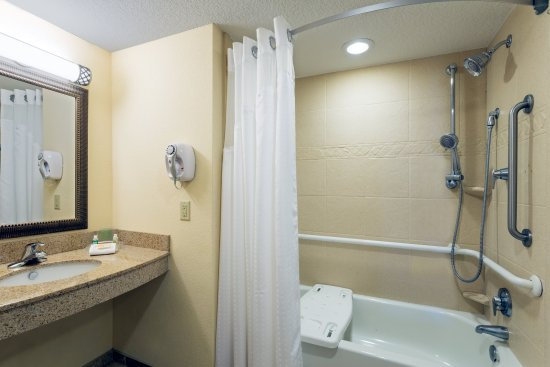 Statesboro, Georgien: Premium ADA/Handicapped Bath with Sit-In Tub