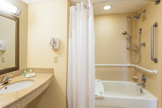 Statesboro, GA: Full-sized ADA/Handicapped Bath with Sit-In Tub