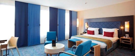 Blagnac, France : Guest Room