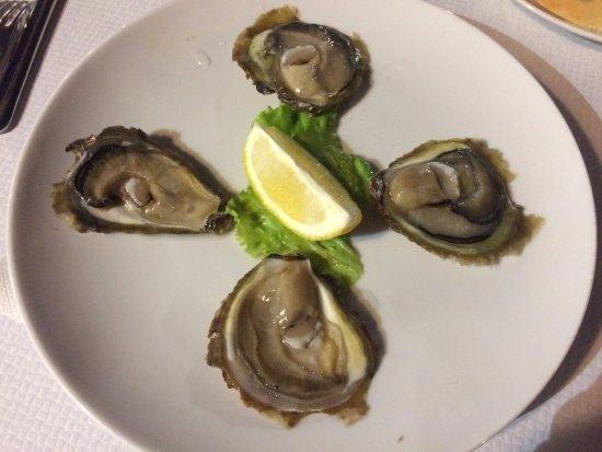 Kamenice: oysters