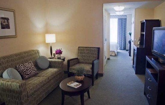 Hilton Garden Inn Dulles North: Suite