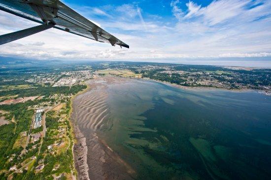 Courtenay, Canadá: Ariel view of estuary