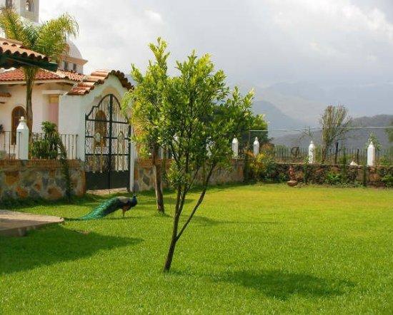 Hacienda la Puerta de Enmedio: Garden